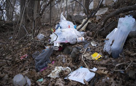 Iowa City partners with UI, Johnson County to keep county clean inside and outside