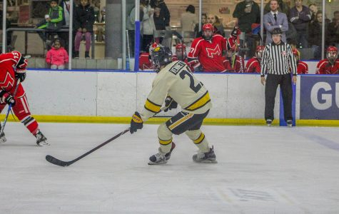 For Iowa's hockey club, what's more powerful: the rush of the game or the repercussions of the injuries?