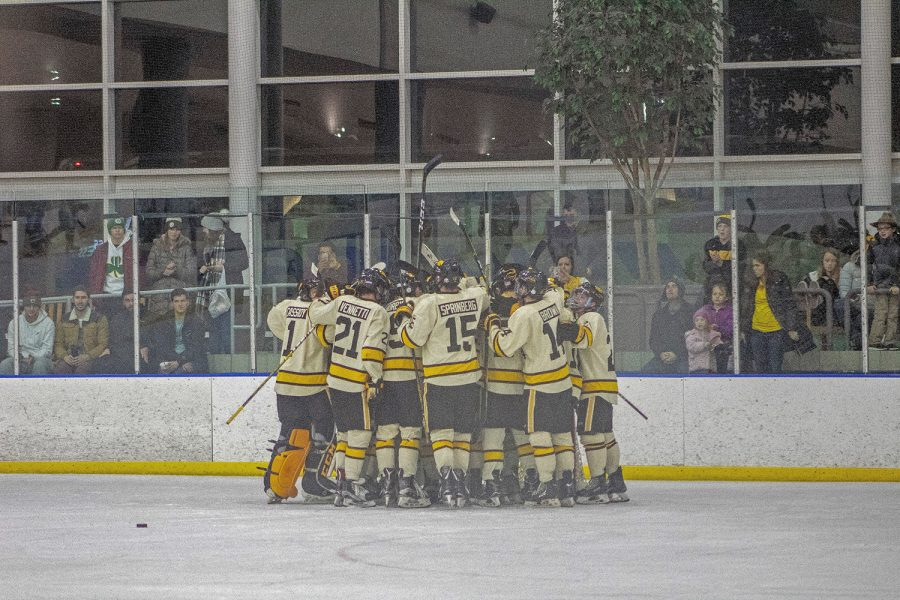 The Hawkeyes celebrates their victory during the game against St. Louis University on January 26, 2019. Iowa won the game 5-2.
