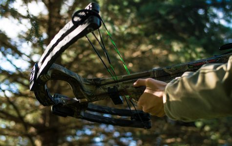 City Council includes bow hunting for deer plan