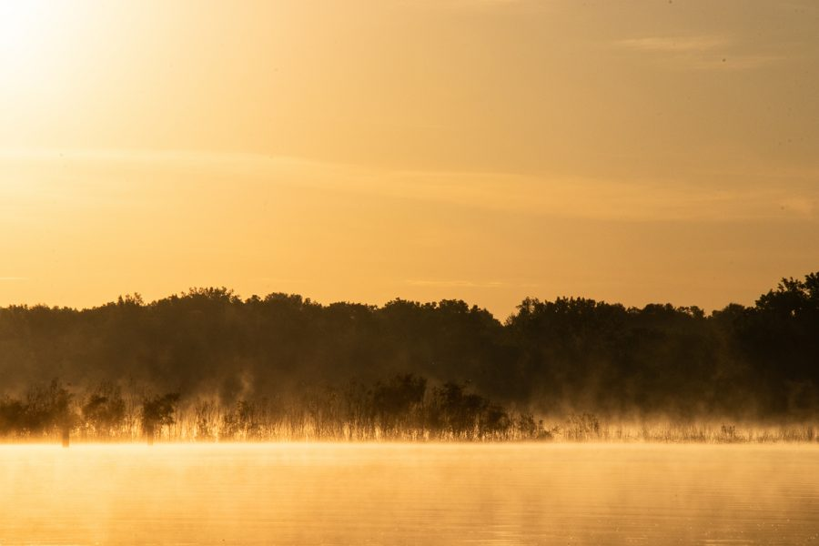 Water vapor from the Coralville Reservoir rises as the morning light hits the water on the morning of June 11, 2019. The vegetation inside the river would typically be above the water.