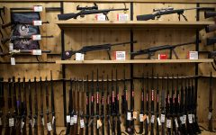 Opinion: Guns are America's dumbest problem