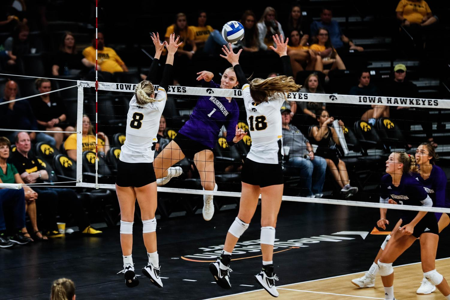 Washington+middle+blocker+Lauren+Sanders+goes+for+a+kill+during+a+volleyball+match+between+Iowa+and+Washington+at+Carver+Hawkeye+Arena+on+Saturday%2C+September+7%2C+2019.+The+Hawkeyes+were+defeated+by+the+Huskies%2C+3-1.