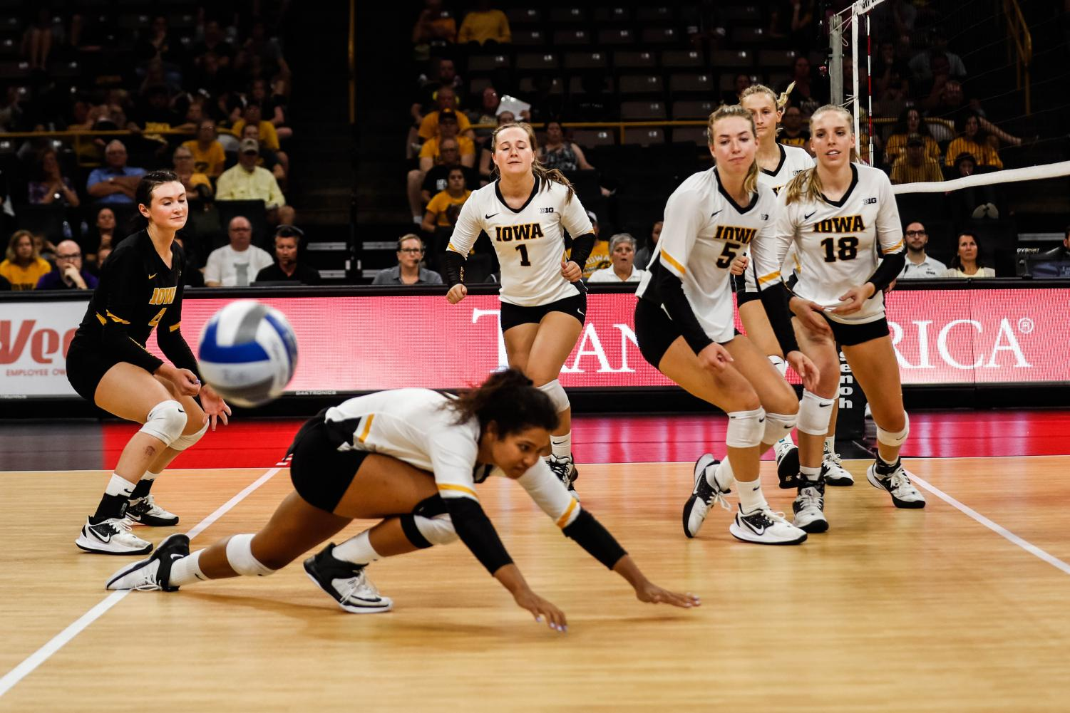 Iowa+players+watch+the+ball+go+out+of+bounds+during+a+volleyball+match+between+Iowa+and+Washington+at+Carver+Hawkeye+Arena+on+Saturday%2C+September+7%2C+2019.+The+Hawkeyes+were+defeated+by+the+Huskies%2C+3-1.