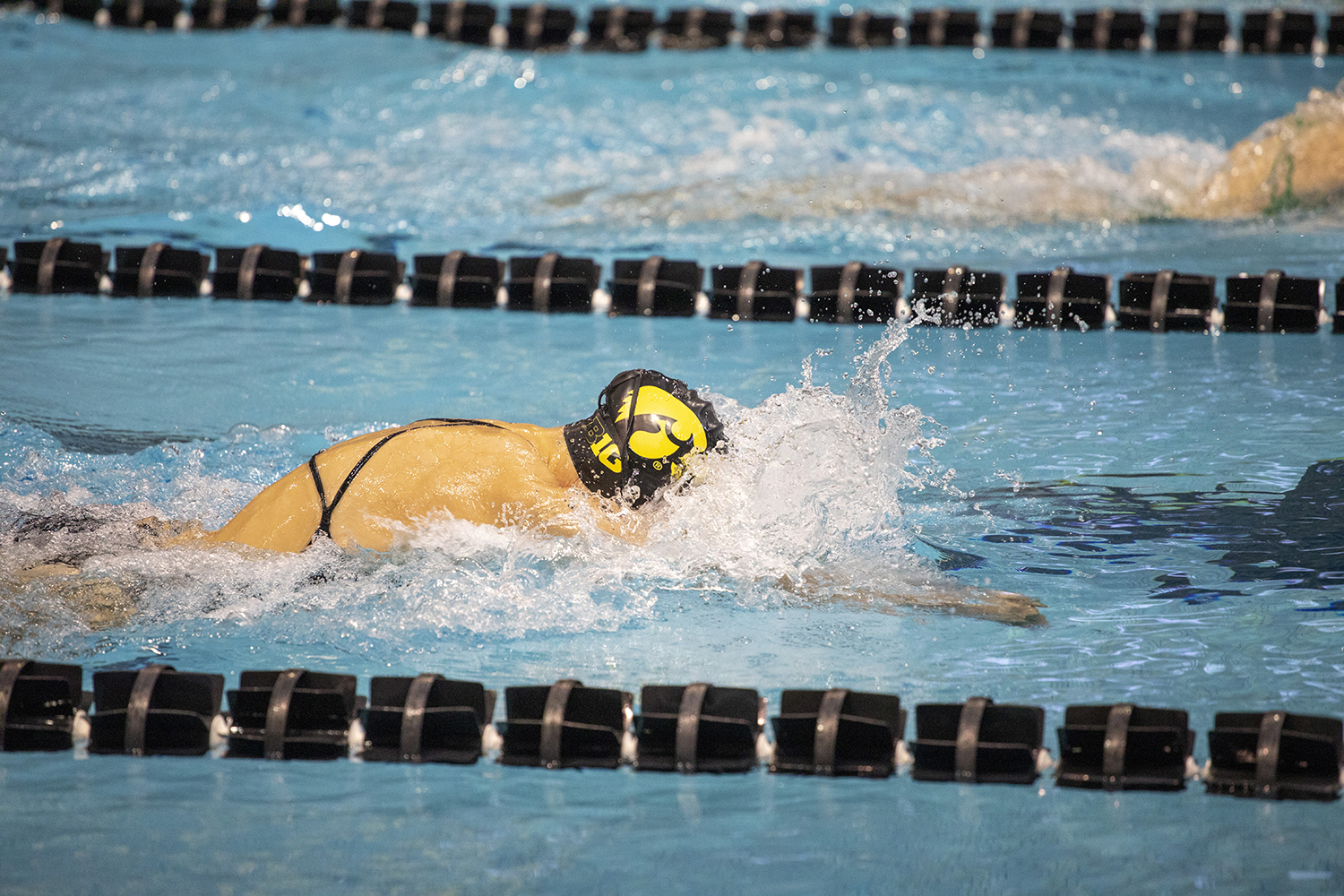 A Hawkeye swims breaststroke at the swim meet on Friday, October 4. The Iowa men won over Michigan State, 180 to 112. The Iowa women won over Michigan State 183 to 113. The women also won over Northern Iowa. 183 to 113. Michigan State won over Northern Iowa 180 to 120.