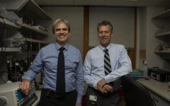 UI doctors prepare to study obscure leading cause of death in refractory epilepsy