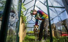 Corbin Scholz and her dog Nina hang out in the greenhouse on Scholz's organic farm near Solon, Iowa, on May 4, 2019.