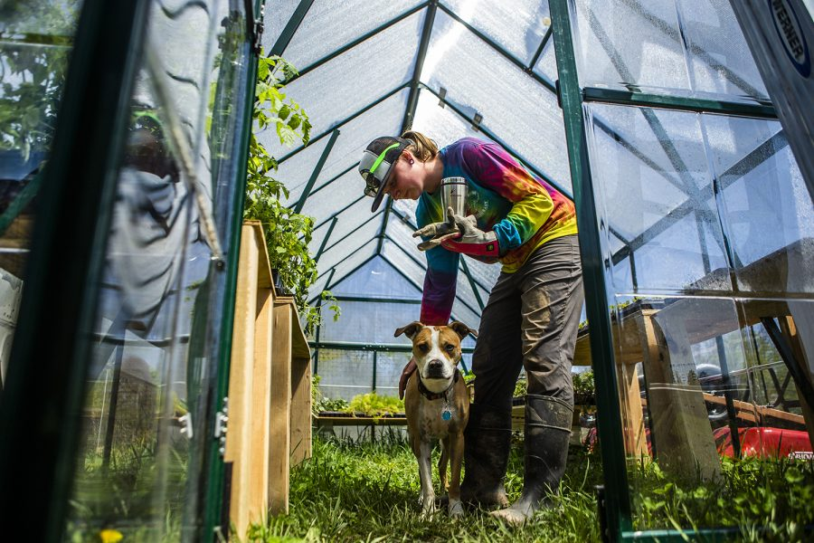 2 years ago, she was pre-med at the UI. Now, she's running her own organic farm.