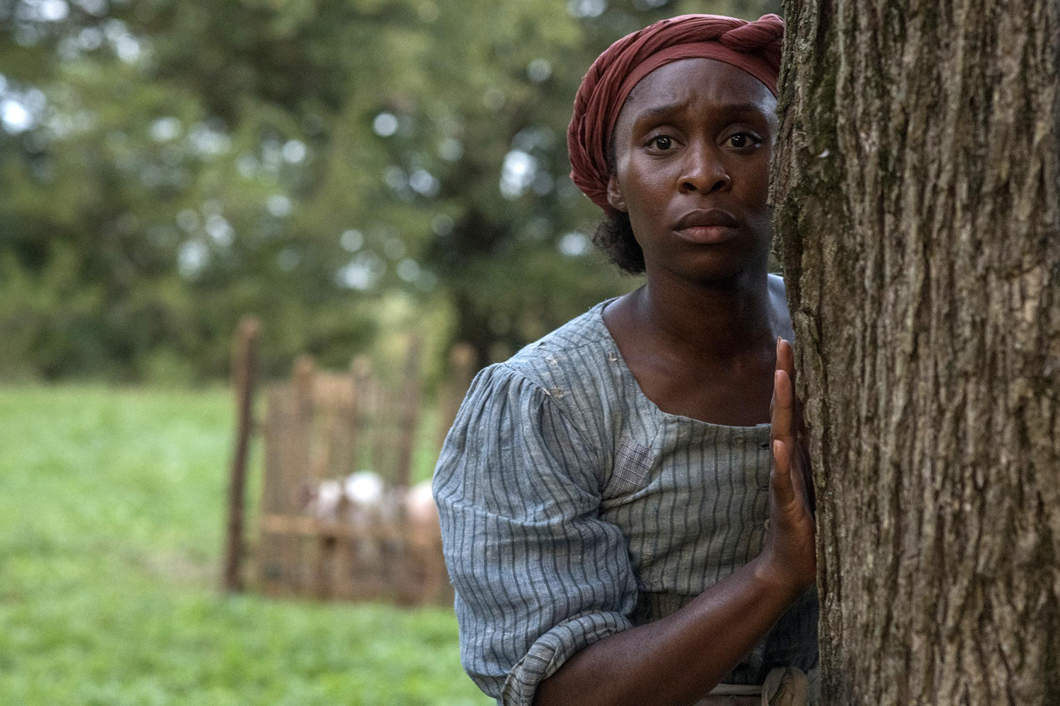 """This image released by Focus Features shows Cynthia Erivo as Harriet Tubman in a scene from """"Harriet,"""" in theaters on Nov. 1."""