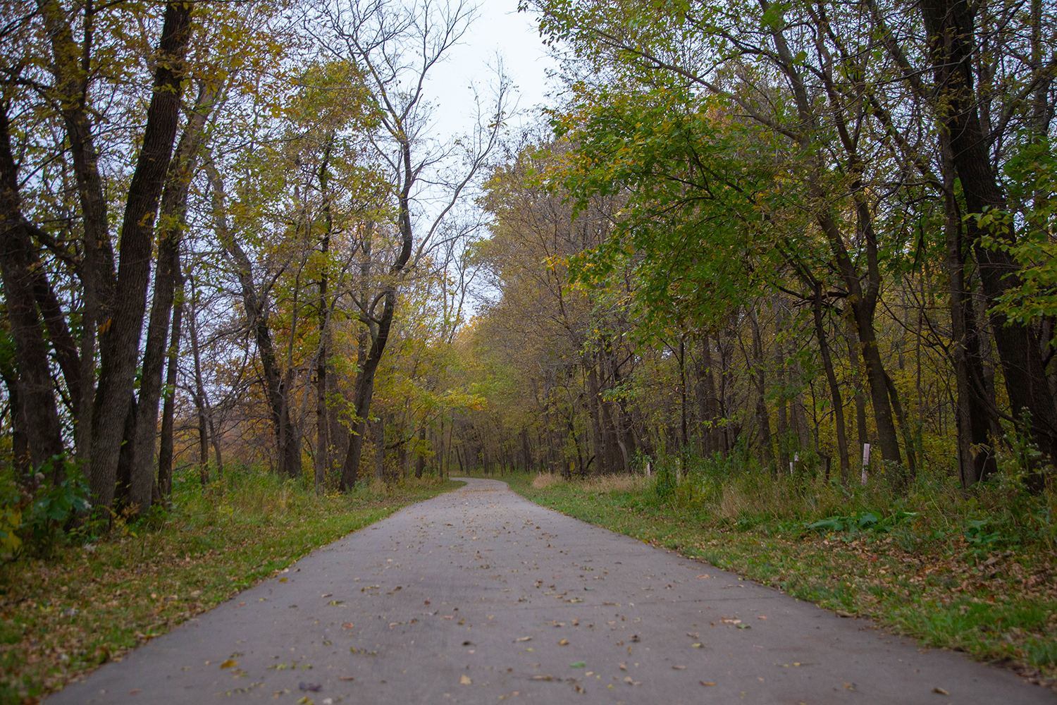 Thee Weidman Walk trail at Terry Trueblood Recreation Area is seen on Monday, Oct. 28, 2019. Iowa City has received a $200,00 resource enhancement and protection grant for ecological work at the park, which features hiking trails, boat rentals, and a playground.