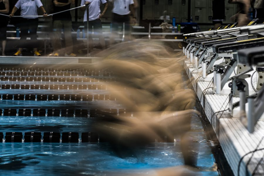 Swimmers jump off the starting block during the triangle meet against Michigan State and UNI on Thursday, October 3, 2019.