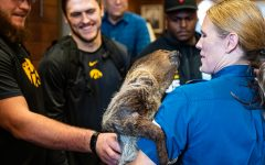 Iowa players meet Zena, a Two-Toed Sloth, at the San Diego Zoo in San Diego on Wednesday, Dec. 25, 2019.