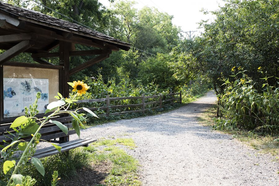 The trailhead looking south on Longfellow Nature Trail, 1401 Sheridan Ave. As seen on Aug 25, 2020