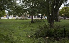 Fallen tree limbs are seen in the green space in front of downtown on Monday, Aug. 10, 2020. With wind gusts around 80 mph, the derecho --a widespread wind damage event produced by severe thunderstorms-- hit Iowa City in the afternoon causing tree damage and power outages.