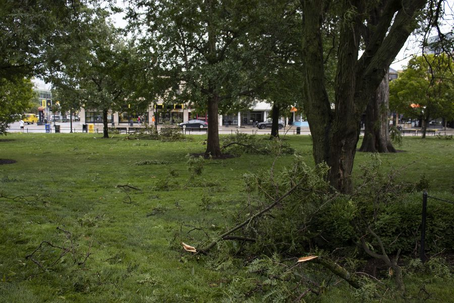 Fallen tree limbs are seen in the green space in front of downtown on Monday, Aug. 10, 2020. With wind gusts around 80 mph, the derecho ­--a widespread wind damage event produced by severe thunderstorms-- hit Iowa City in the afternoon causing tree damage and power outages.
