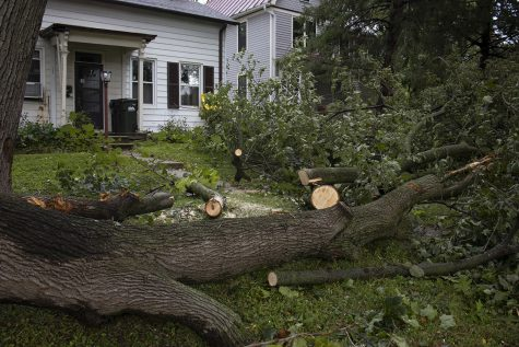 A fallen tree partially sawed is seen on Monday, Aug. 10, 2020. With wind gusts around 80 mph, the derecho ­--a widespread wind damage event produced by severe thunderstorms-- hit Iowa City in the afternoon causing tree damage and power outages.