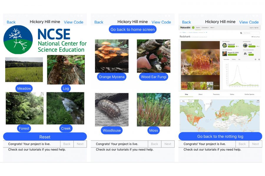 The home screen of the Hickory Hill Hunt app displays its different elements. Designed by University of Iowa PhD Student Rachel Larson, the app is intended to help its users learn about wildlife. (Contributed)