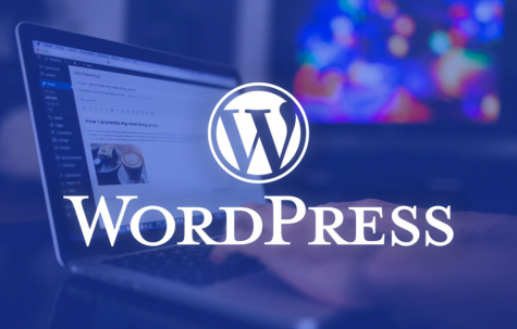 WordPress 5.6 Development Fell Behind, Why Users Are Excited About The New Version?