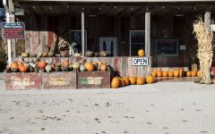 Still plenty of fall decor at the store.As seen on Saturday, Nov. 7, 2020. Wilson's Orchard and Farm 4823 Dingleberry Rd NE #1. They will now be open year around.