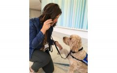 Photo of Joy Miller and her therapy dog Milo. Contributed.