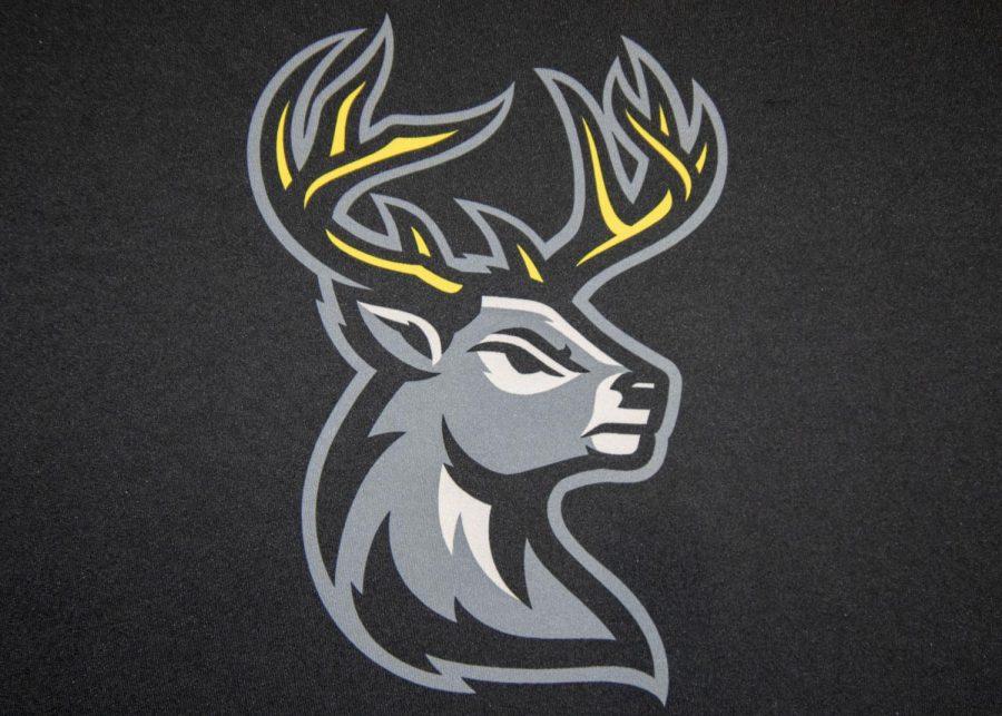 Coralville ECHL franchise unveils team nickname, logos
