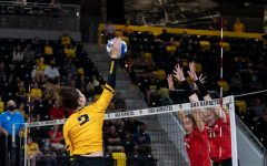 Right side Courtney Buzzerio goes for a kill against two Ball State blockers during the volleyball match between Iowa and Ball State on Friday, Sept 10, 2021. The Cardinals defeated the Hawkeyes 3-2.