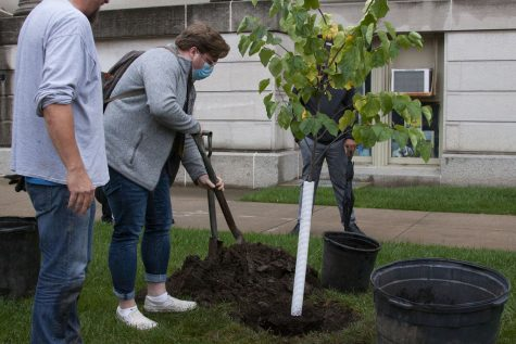 """University of Iowa students plant trees to celebrate Homecoming Week on Monday Oct. 11, 2021. """"With the theme for this week being moving traditions forwards, I think it was important for us to continue the tree planting tradition."""" said Coltin Ball, Equity Director of the Homecoming Council."""